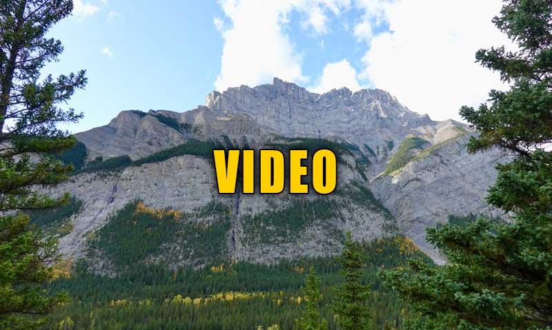 jasper group video