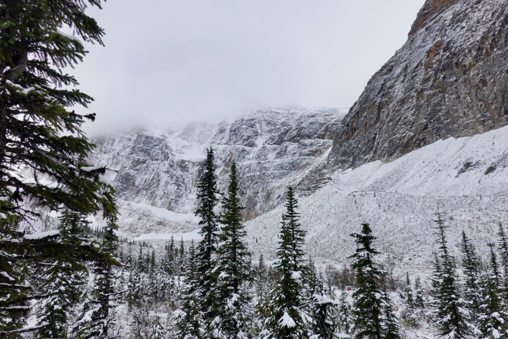 mount edith cavell winter