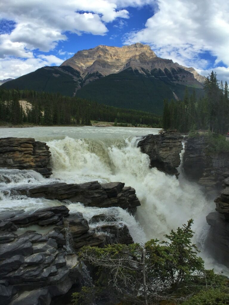 Athabasca River Trail