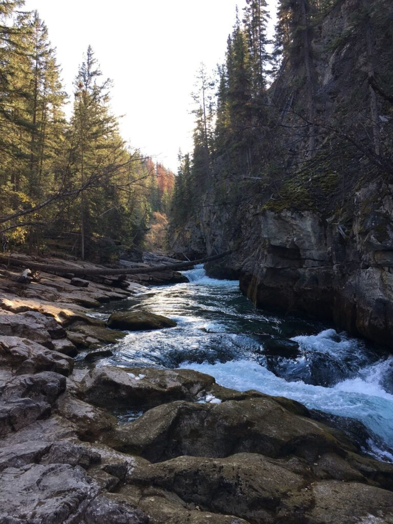 Maligne Canyon Loop