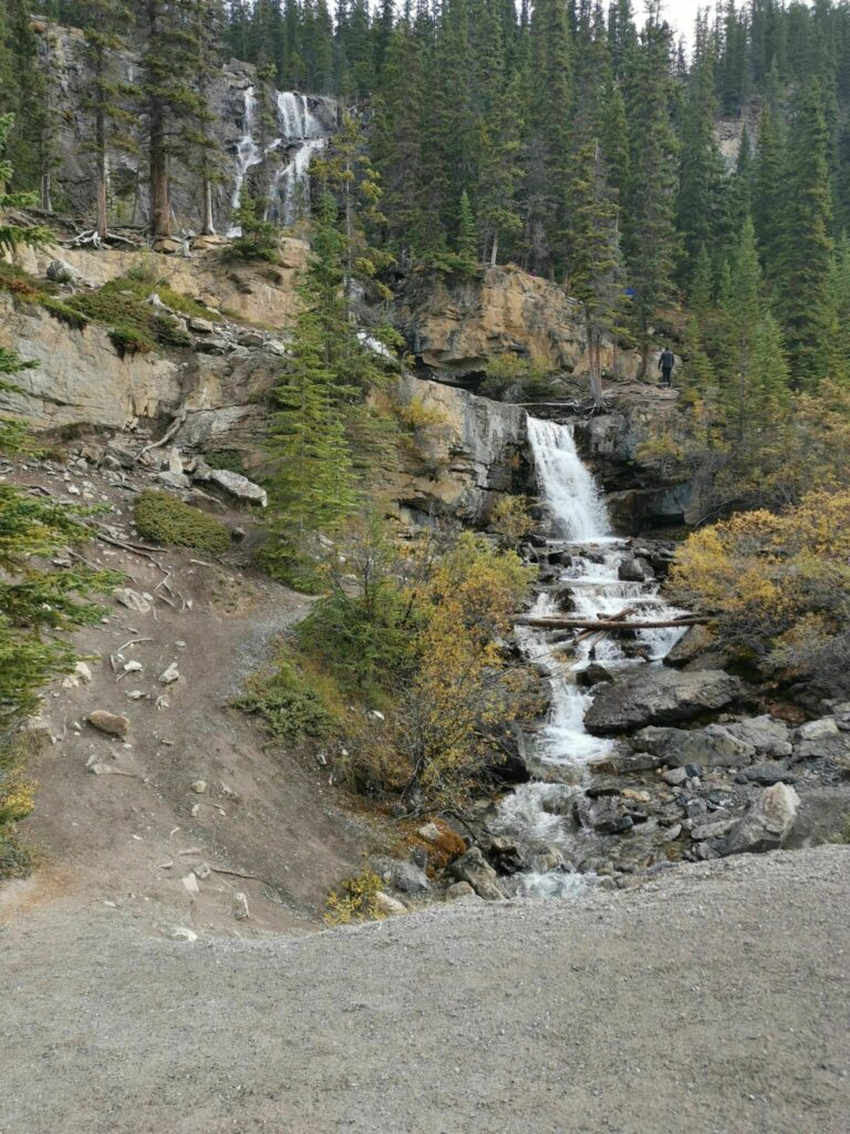Wilcox Pass Trail to Tangle Peak Trail