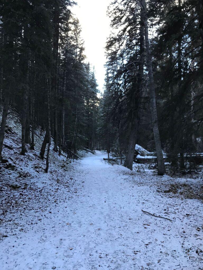 Cottonwood Creek Trail