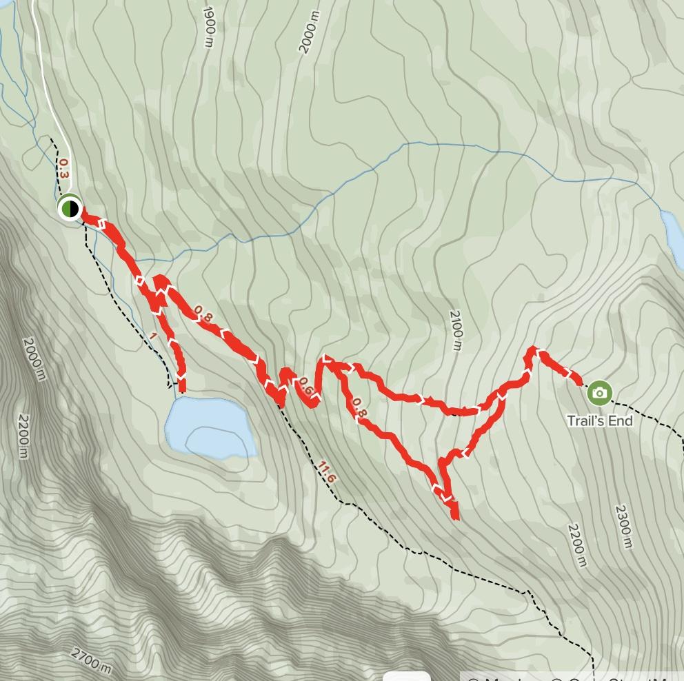 Edith Cavell Meadows Trail