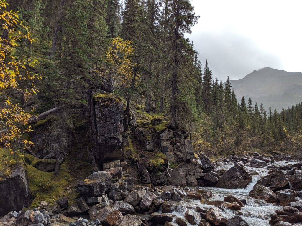 Fiddle River Trail