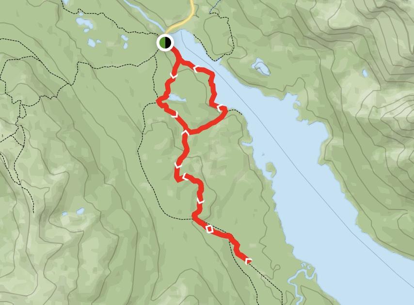 Great Divide Trail: Maligne Lake and Moose Lake Loop Map
