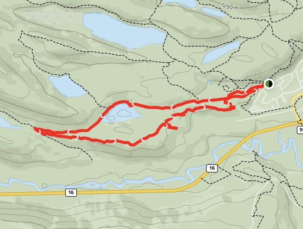 Marjorie Lake Loop Map