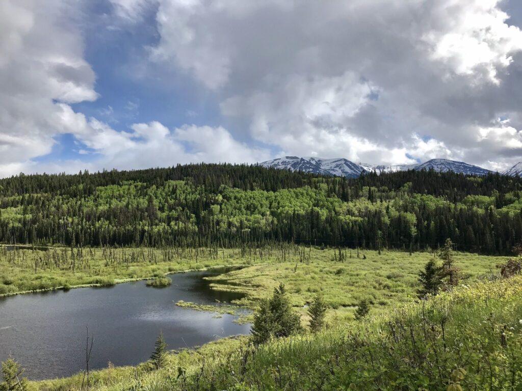 Patricia Lake South Loop