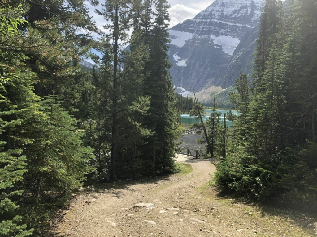 Wates-Gibson Hut from Edith Cavell Hostel via Astoria River Trail