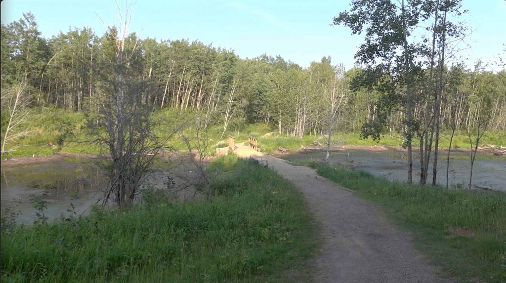Beaver Pond Trail Pathway